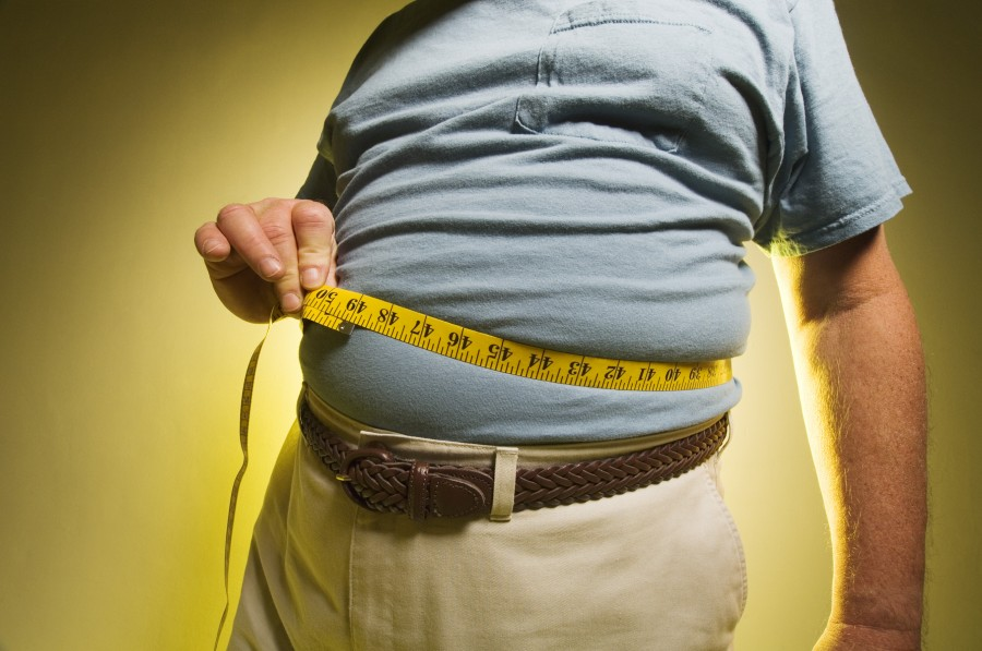 Obesity Help And Microflora